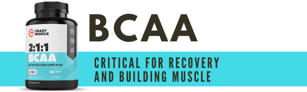 bcaa branched chain amino acids bcaas aminos leucine isoleucine valine muscle recovery pills tablets