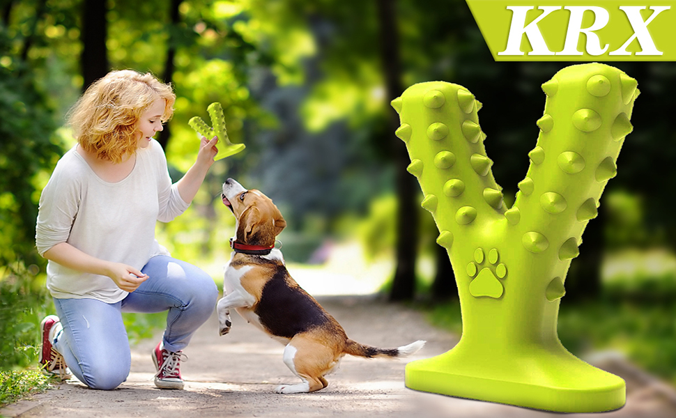 dog chew teething toy puppies aggressive squeaky dog teeth cleaning indestructible durable dog toys