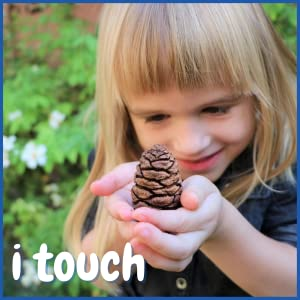 sense of touch, pine cone, sequoia, fractals, toddler nature play, nature learning, sensory activity