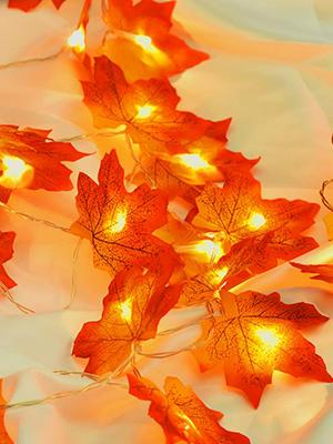 Thanksgiving string lights