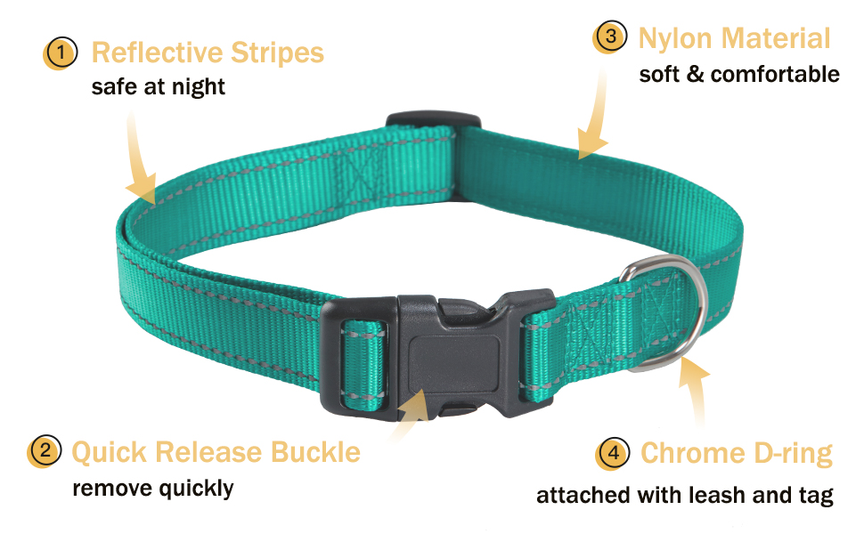 Each collar will utilize 2 special lines of reflective thread. Ensurethat dog will be seen at night