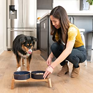 fresh home made dog food healthy just food for dogs