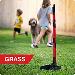 Scoop on grass