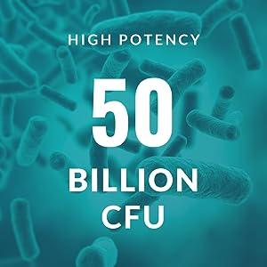 50  Billion CFU Probiotic