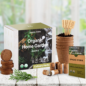 Culinary herb USDA organic seed kit basil cilantro parsley sage thyme peat pots soil discs