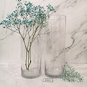 Holsey clear glass vase
