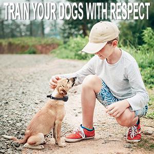 respect for dog