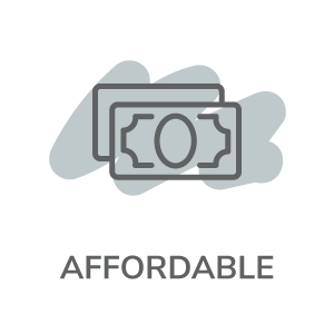 affordable with money icon
