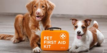 ARCA PET FIRST AID KIT