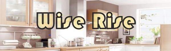 Wise Rise logo