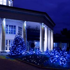 blue christmas string lights
