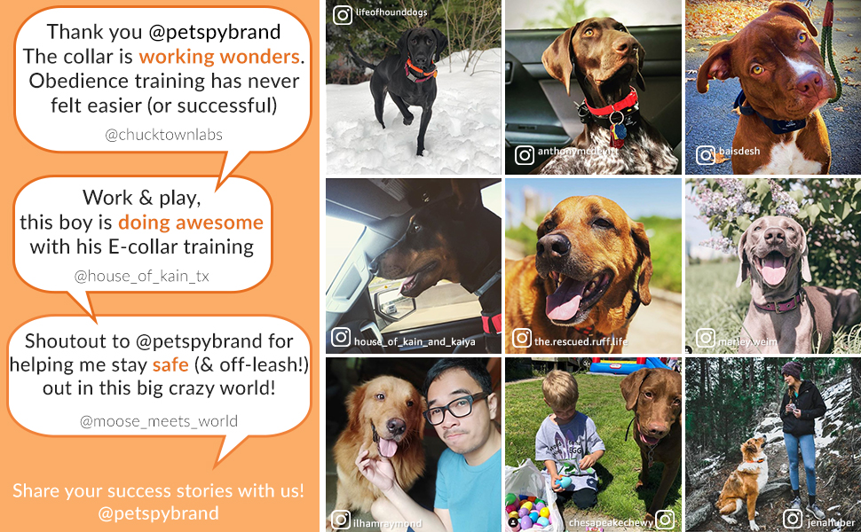 Happy petspy xpro customers reviews from instagram