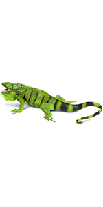 lizard, safari, creatures, large, nature