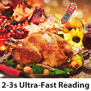 2-3s Ultra-Fast Reading food thermometer