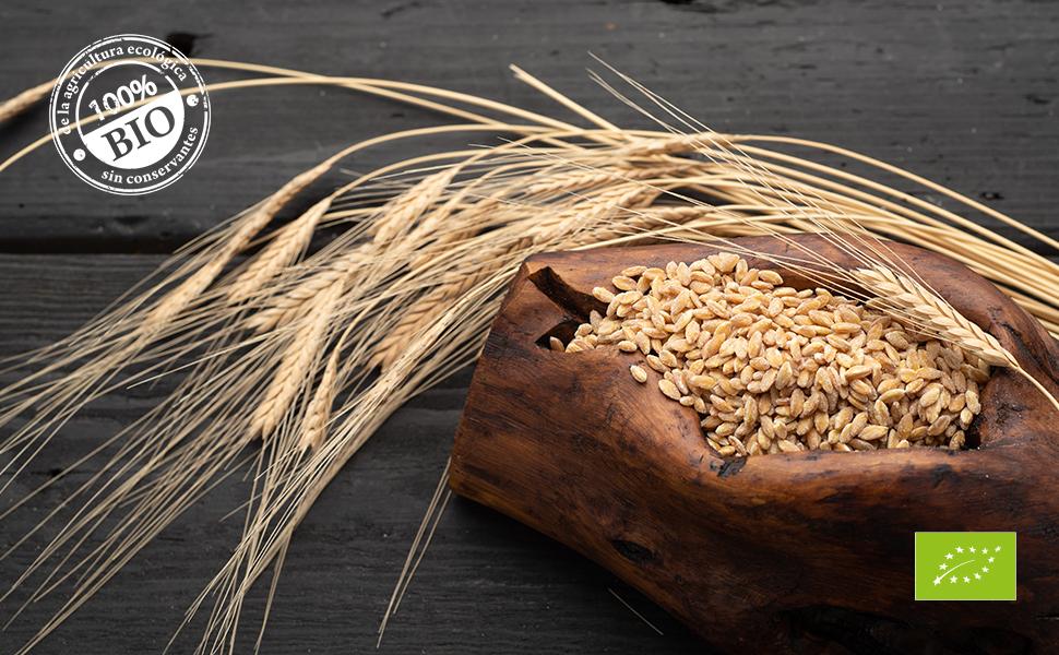 Biojoy Escanda granos enteros BÍO, Triticum monococcum (5 kg): Amazon.es: Alimentación y bebidas