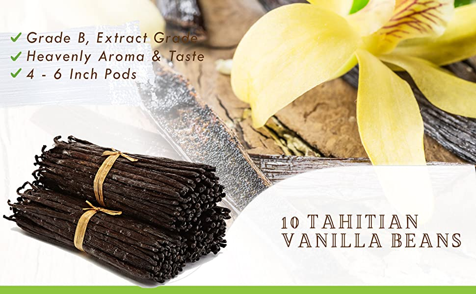 Vanilla beans Madagascar grade a natural vanilla bean gourmet whole Tahitian grade b extract paste