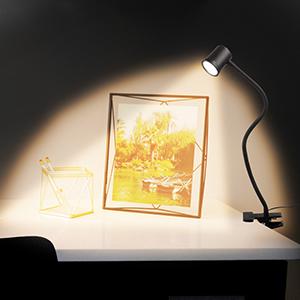 clip on book light