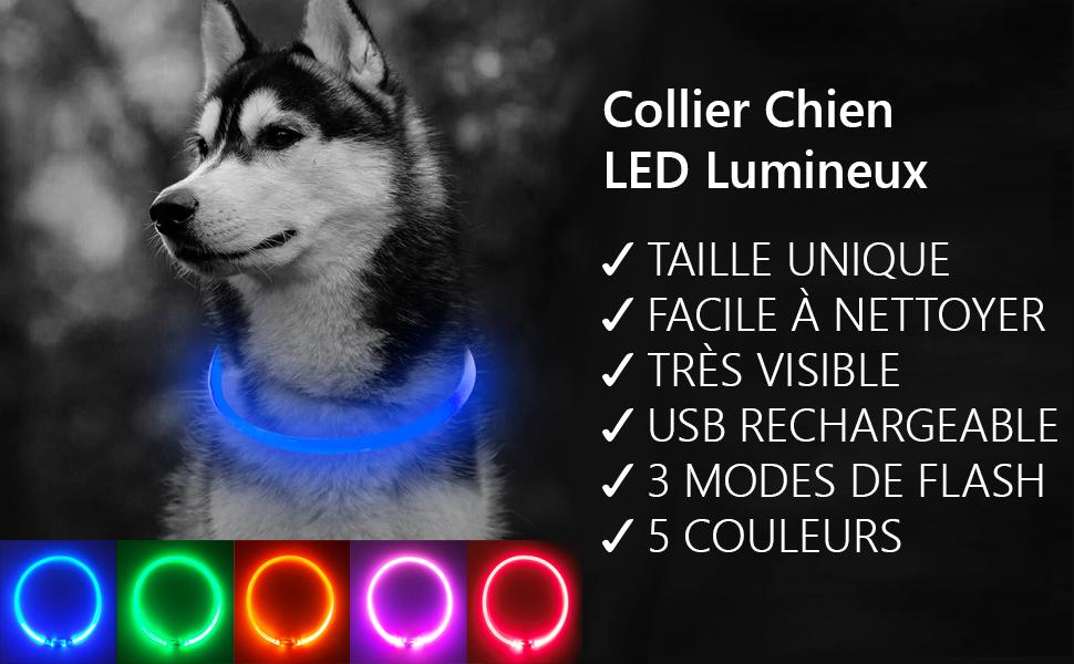 Collier chien led lumineux rechargeable clignotant Sécurité animal chat