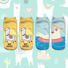 llama socks alpaca socks