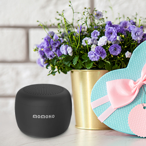 Momoho Portable Bluetooth Speaker BTS0053 Picture 3