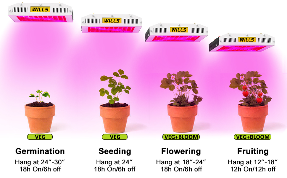 indoor plant light