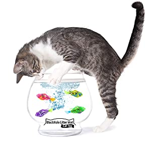 Cat playing with BlackHole Litter Mat Robot Fish Cat Toy in a water bowl