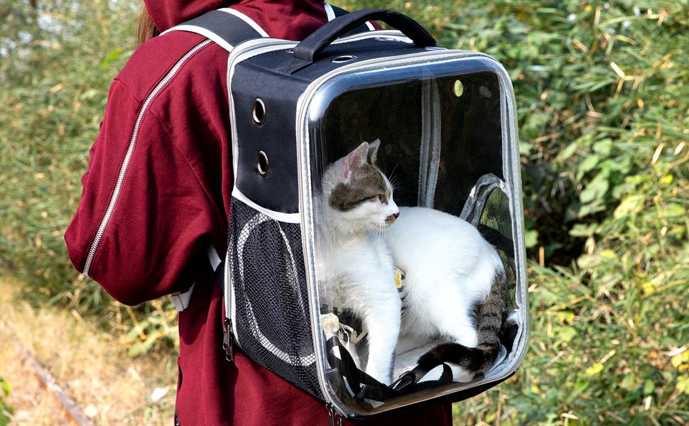 cat pink backpack carrier