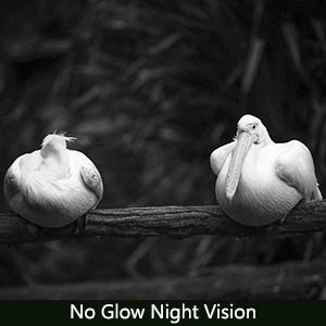 No glow night Vision