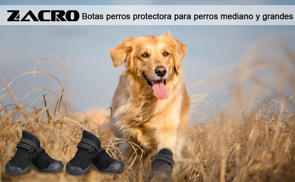 Zacro 4pcs Botas Perros,Protectores Patas para Perro, Zapatos Impermeable para Mediano y Grandes Perros,de 2 Reflecante Bandas,Suela Antideslizante y Estable,Negro,8#: Amazon.es: Productos para mascotas
