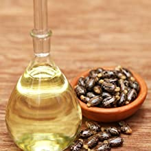 black seed oil,  onion black seed oil for hair regrowth, wow onion black seed oil