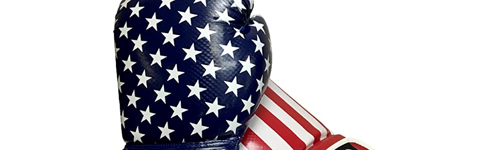 Includes Set of Gloves American Flag 14.5 Inch Punching Bag