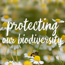 protecting our biodiversity