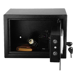 Cabinet Safe for Passports Money