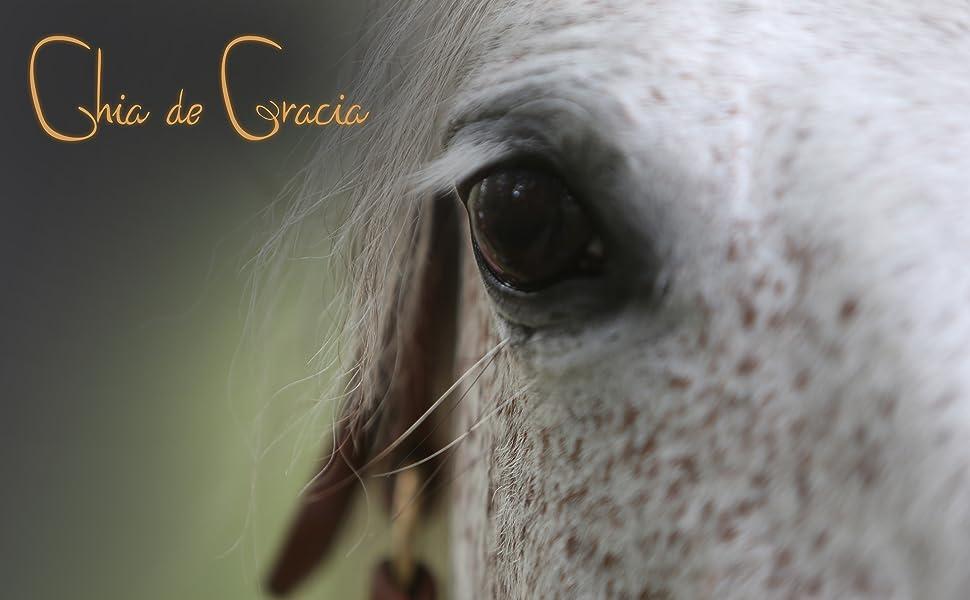 Chia de Gracia logo horse supplements