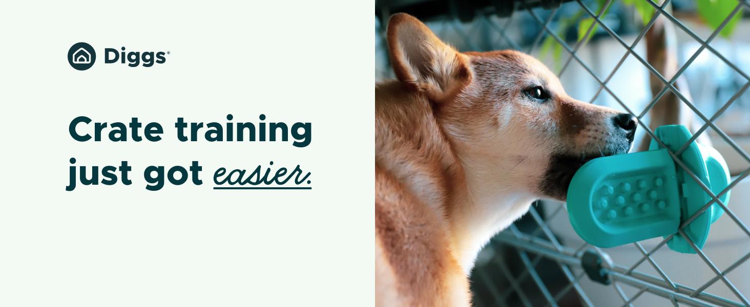 training aid, treat toy, dog toy