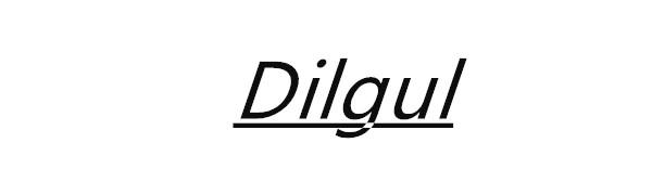 Dilgul Best Of My love