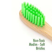 BPA free non toxic bristles