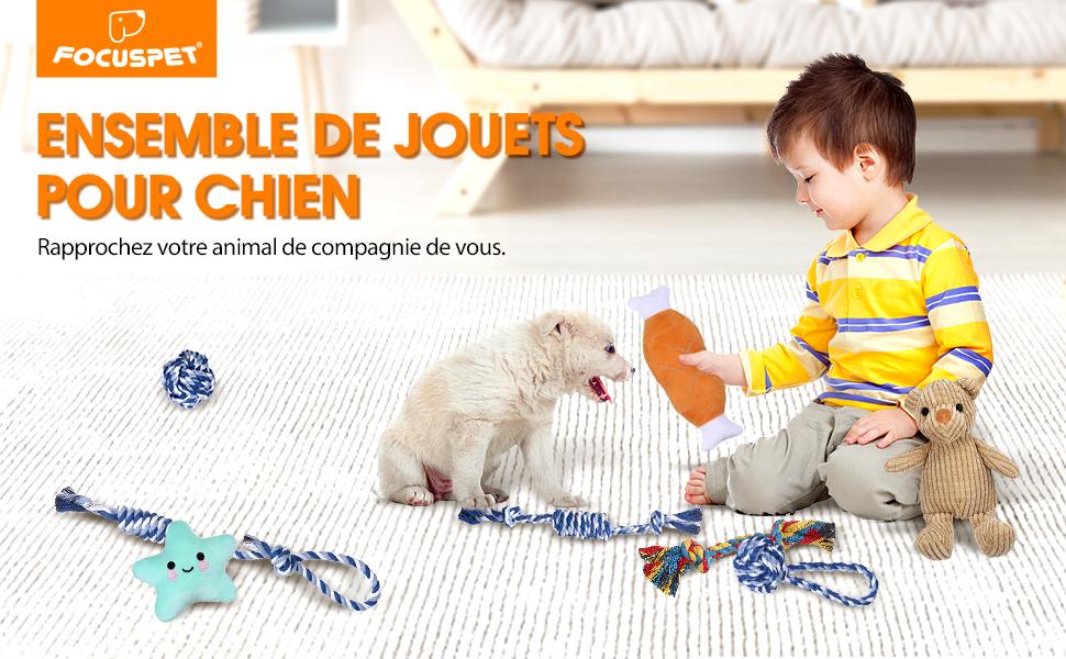 jouet pour chien instructible