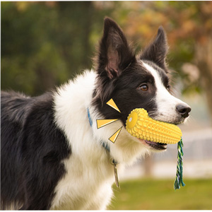 chew dogs toy yellow
