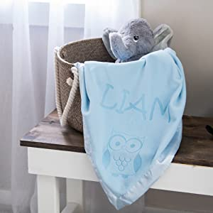 Blue Blanket with Owl Design in Gift Basket