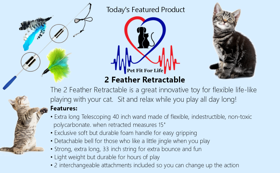 Pet Fit For Life Retractable Cat Toy Teaser