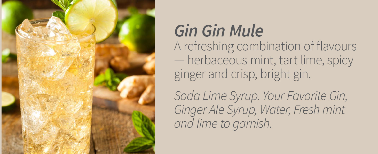 Gin Gin Mule Mint Lime Ginger Cocktail