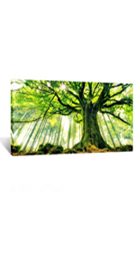 forest canvas wall art wall art poster big size, fantasy nature wall art, photography of trees print