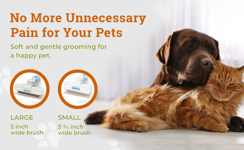 No more unnecessary pain for your pets