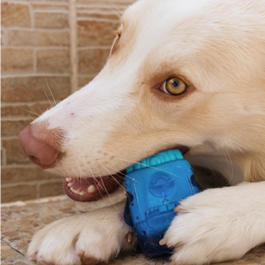 Brain Freeze - Juguete masticable para perros