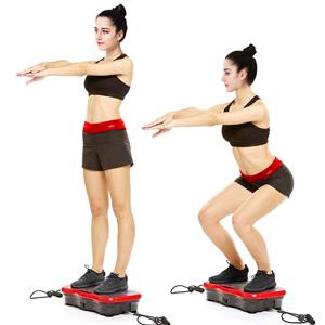 Whole Body Vibration Shaking Machine,