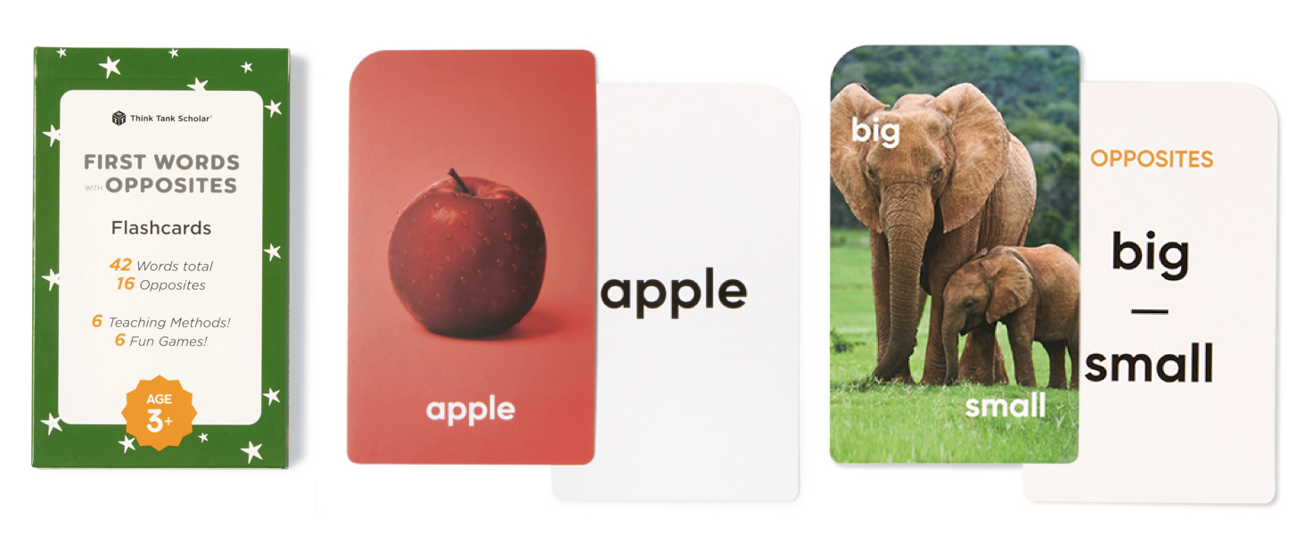 First Words & Opposites Flashcards