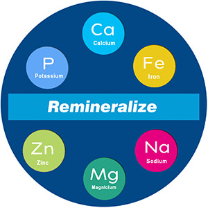 alkaline remineralization filter system