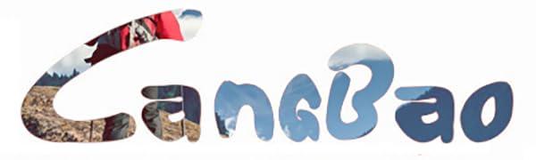 LANGBAO