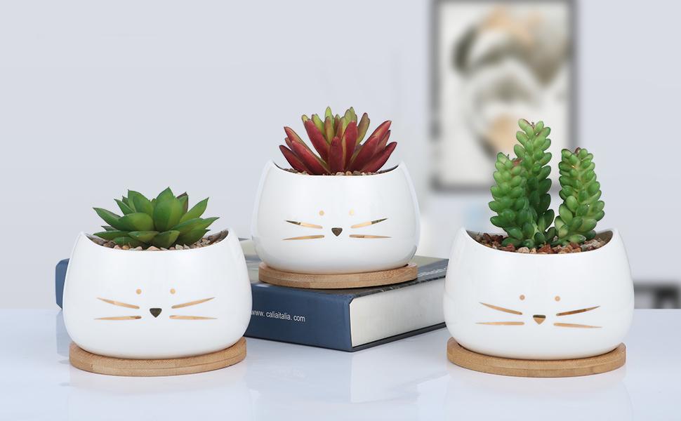 Koolkatkoo Cat Succulent Planter